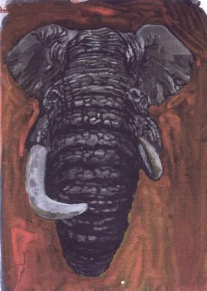 Noch ein Elefant!